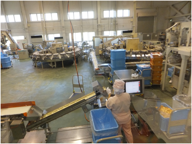 Conveyor options set to meet the needs of food processors